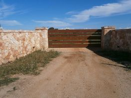 Landgut in verkauf in carretera Pina, Algaida - 250408714