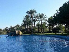 Foto - Piso en venta en calle El Palmeral, San Gabriel en Alicante/Alacant - 348272141