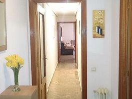 Foto 7 - Apartamento en alquiler en Ciudad Real - 252558948