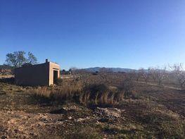 Grundstück in verkauf in Pla de Santa Maria, el - 349715560