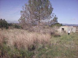 Grundstück in verkauf in Valls - 349715617