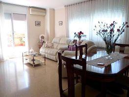Piso en venta en Lloreda -La Pau en Badalona - 255644616