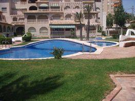 Wohnung in verkauf in calle Playa Muchavista, Playa Mucha Vista in Campello (el) - 254611464