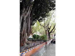 Pis en venda plaza San Pedro, Alfalfa a Sevilla - 264403215