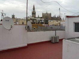 Piso en alquiler en calle San Diego, Museo en Sevilla