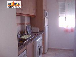 Foto - Apartamento en alquiler en Elche/Elx - 304462090
