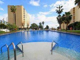 Foto - Apartamento en alquiler en calle Avd Tamarindos, Puerto Marina en Benalmádena - 392347536