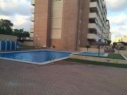 Foto - Piso en alquiler en calle Universidad Ciudad Deportiva, Altabix en Elche/Elx - 414897485