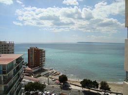 Pis en venda Albufereta a Alicante/Alacant - 284469195