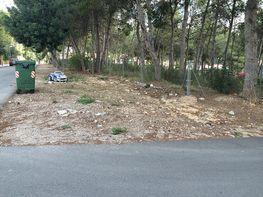 Terreny en venda calle Ciento Diecisiete, Cañada, La - 280726233