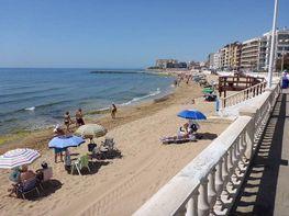 Foto - Apartamento en venta en calle Playa de Los Locos, Playa de los Locos en Torrevieja - 275909706