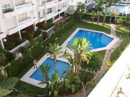 Piscina - Apartamento en alquiler en San Pedro Pueblo en Marbella - 291516219