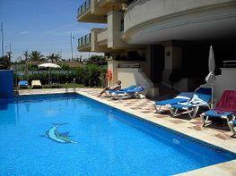 Piscina - Apartamento en alquiler en San Pedro Pueblo en Marbella - 398046375