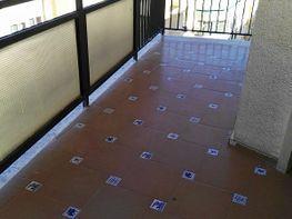 Pis en venda calle Maestranza, La Malagueta-La Caleta a Málaga - 383769916