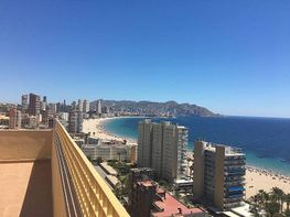 Foto - Apartamento en venta en calle Poniente, Poniente en Benidorm - 310627138