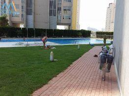 Foto - Apartamento en venta en vía Parque, Poniente en Benidorm - 312639542