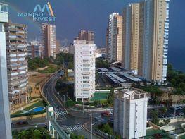 Foto - Apartamento en venta en calle Poniente, Poniente en Benidorm - 323195667