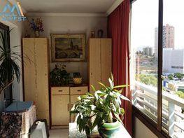 Foto - Apartamento en venta en calle Cala de Finestrat, Benidorm - 326900357