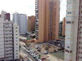 Foto - Piso en venta en calle Mercadona, Levante en Benidorm - 346829046
