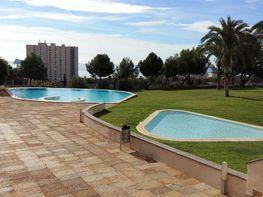 Foto - Apartamento en venta en vía Parque, Poniente en Benidorm - 346829220