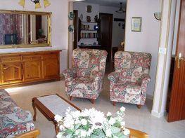 Foto - Ático en venta en calle Jaime I, Benidorm - 360666274