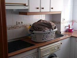 Foto - Apartamento en venta en calle Avenida Beniarda, Zona centro en Benidorm - 391731838