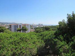 Wohnung in verkauf in Castell-Platja d´Aro - 281451730
