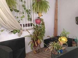 - Piso en alquiler en Sanlúcar de Barrameda - 283216986