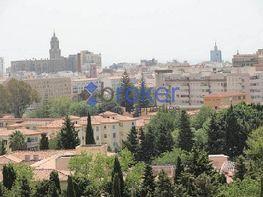 Piso en alquiler en Palma-Palmilla en Málaga