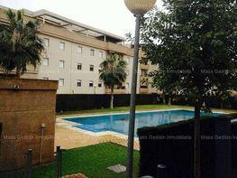 Foto - Ático en venta en calle Jerez, Rural en Jerez de la Frontera - 284451140