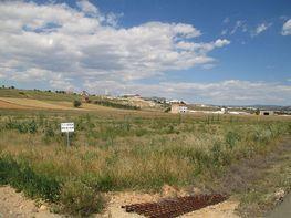 Finca rústica en venta en Teruel