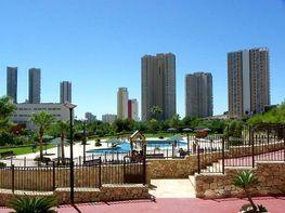 Imagen sin descripción - Apartamento en venta en Benidorm - 314265292