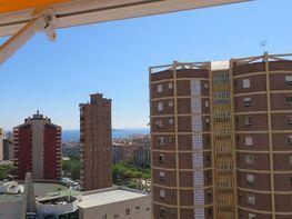 Imagen sin descripción - Apartamento en venta en Benidorm - 345233107