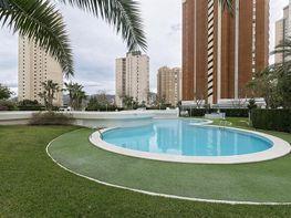 Imagen sin descripción - Apartamento en venta en Levante en Benidorm - 379673990
