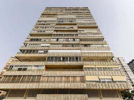 Imagen sin descripción - Apartamento en venta en Levante en Benidorm - 414289174