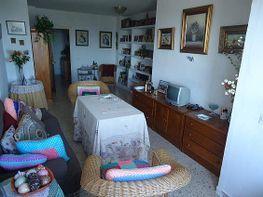 Wohnung in verkauf in Rural in Jerez de la Frontera - 307376676