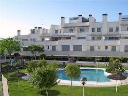 Maisonettewohnung in verkauf in Norte in Jerez de la Frontera - 307774288