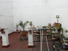 Piso - Piso en venta en Triana en Sevilla - 288289106
