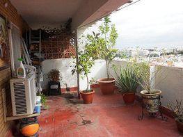 Piso - Piso en venta en Triana en Sevilla - 288291707