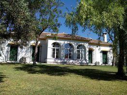Casa rural en venta en calle De Sanlucar la Mayor, Umbrete - 359198806