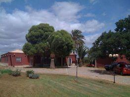 Landhaus in verkauf in calle De Los Rubiales, Villanueva del Ariscal - 359199184