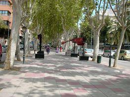 Petit appartement de vente à calle Gran Vía Alfonso X El Sabio, San Miguel à Murcia - 296214069