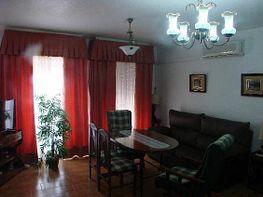 Wohnung in miete in Azuaga - 330575001