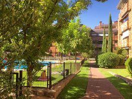 Wohnung in verkauf in calle Cisne, Valdemarín in Madrid - 317575986