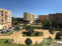 Piso en alquiler en Noreste-Granja en Jerez de la Frontera