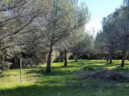 Grundstück in verkauf in Valdemorillo - 358450828