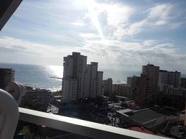Àtic en venda calle Alcoy, Campello Playa a Campello (el) - 395885659