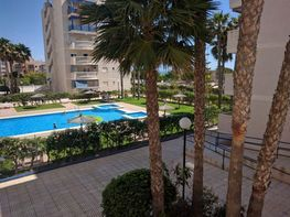 Estudi en venda calle Costa Blanca, Arenales del Sol, Los - 359379368