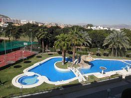 Foto 1 - Piso en venta en calle Pintor Fernando Soria, Albufereta en Alicante/Alacant - 303857488