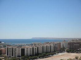 Foto 1 - Piso en venta en calle Avenida Alcalde Lorenzo Carbonell, Babel en Alicante/Alacant - 310516078